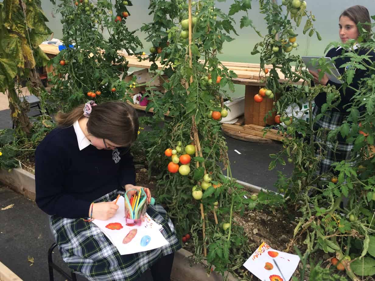 Students using the polytunnel for inspiration for their art
