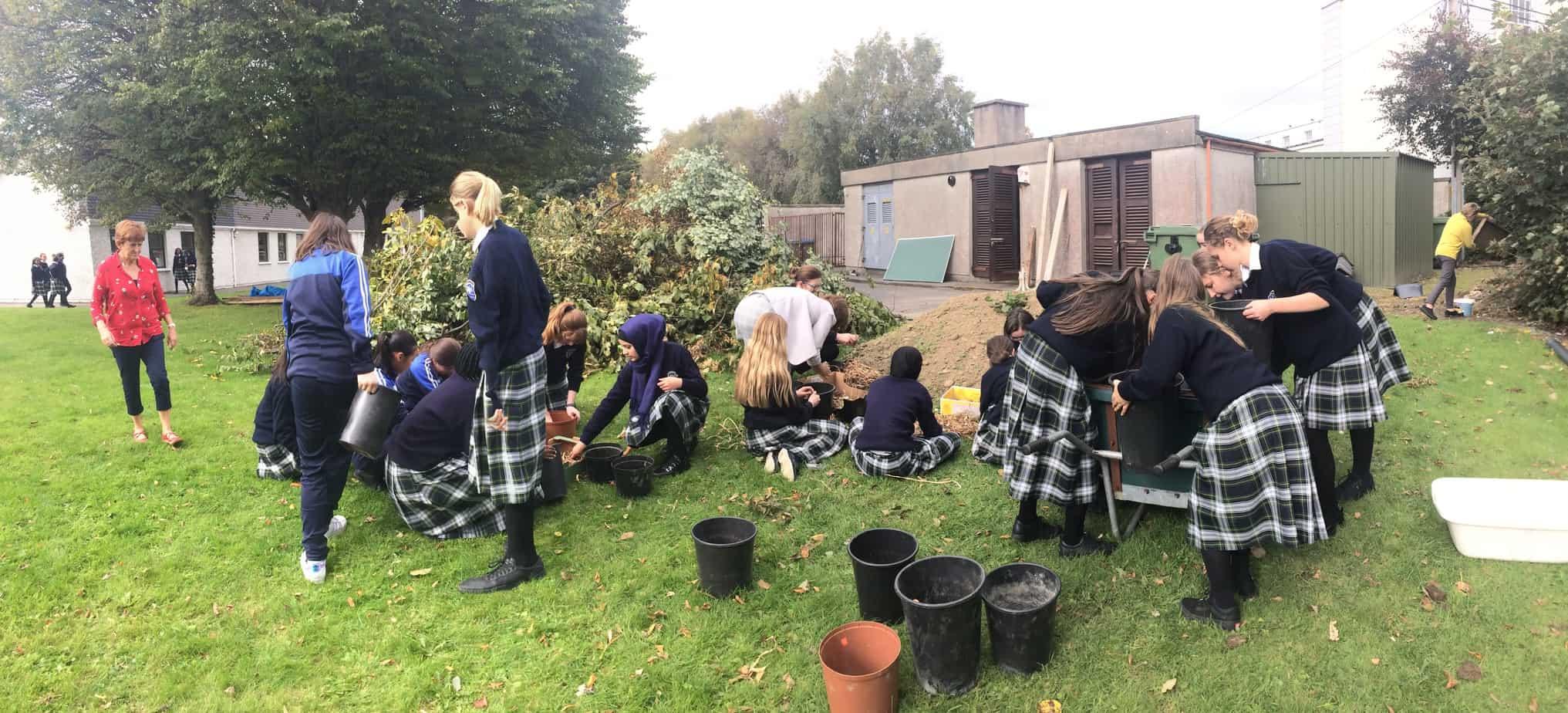 The Organic Garden Group planting bulbs